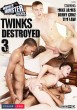 Twinks Destroyed 3 DOWNLOAD - Front