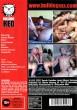 Lost Innocence 1 DVD - Back