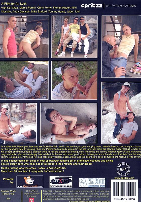 Lattenschuss DVD - Back