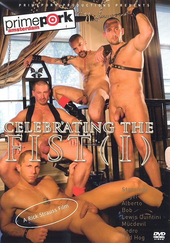Celebrating the Fist 1 DVD - Front