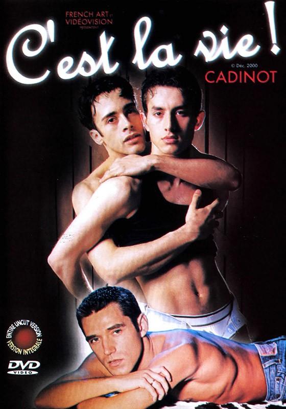 C'est La Vie DVD - Front