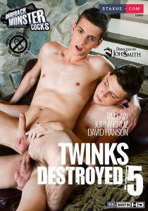 Twinks Destroyed 5 DOWNLOAD - Front