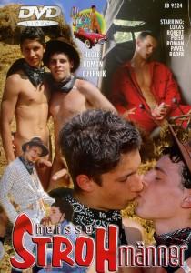 Heisse Strohmänner DVD