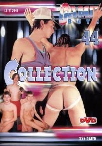 Game Boys Collection 44 DVDR (NC)