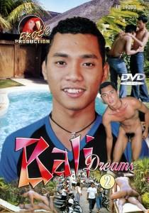 Bali Dreams 2 DVDR