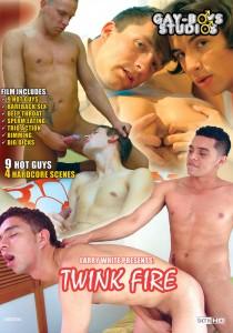 Twink Fire (GBS) DVD - Front