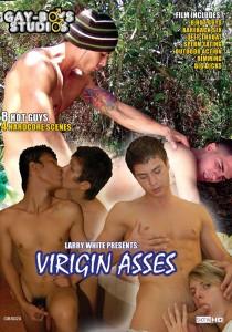 Virgin Asses (GBS) DVD