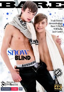 Snow Blind DVD