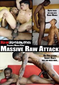 Massive Raw Attack DVD (S)