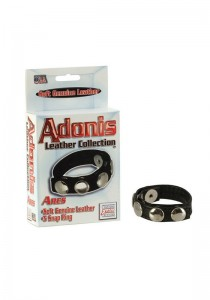 Adonis Leather Collection - Ares