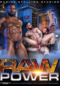 Raw Power (Raging Stallion) DVD (S)