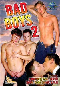 Bad Boys 2 DVD (NC)