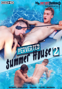 Perverted Summer House 2 DVD